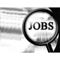 Jobs 300x300